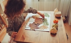 Fall Activities for You and Your Child